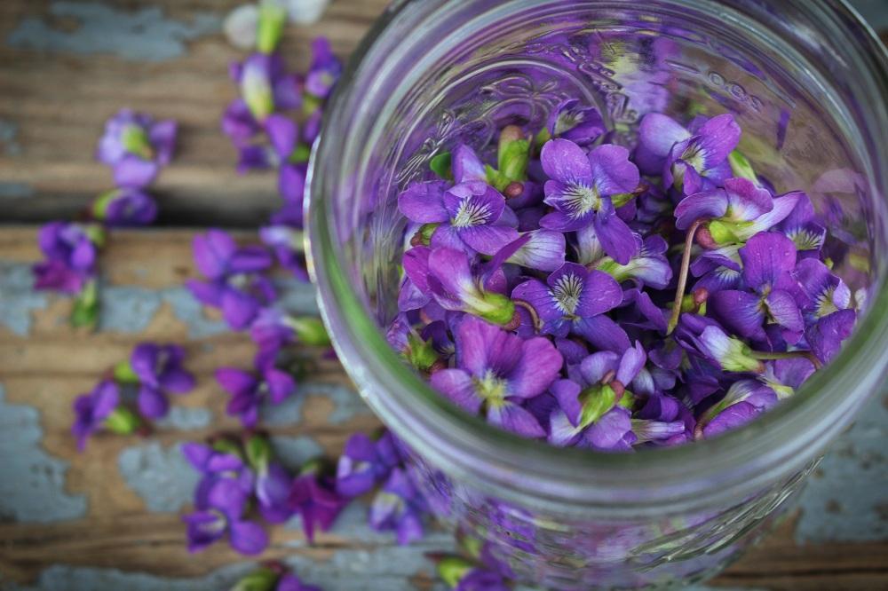 violetpizza16